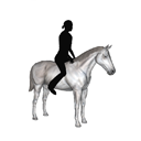 LMO - Mustang - Grey